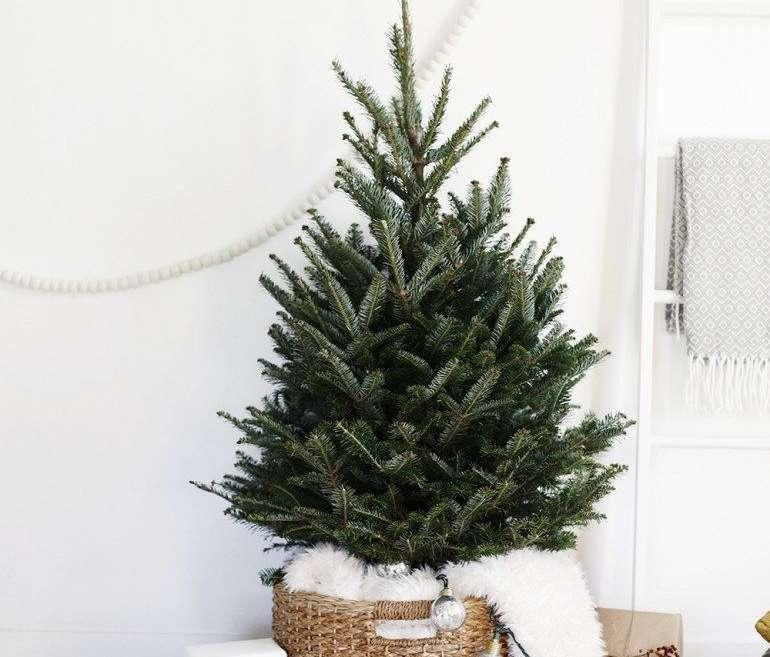 Minimal Christmas